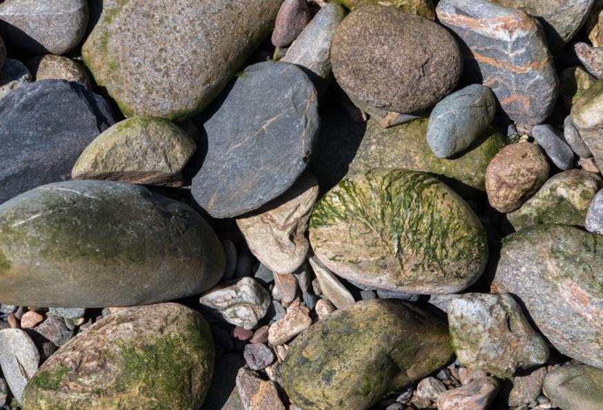 Beach rocks IMGP7541